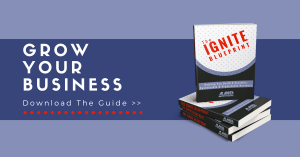 Scale Your Business With The IGNITE Blueprint